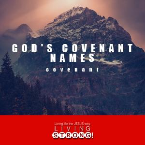 God's Covenant Names - by Ps Ashish Raichur